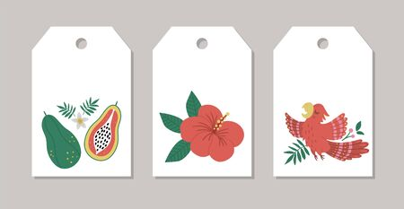 Set of vector summer gift tags, labels, pre-made designs with tropical bird, flowers, fruit. Funny exotic card templates with cute jungle characters. Illustration
