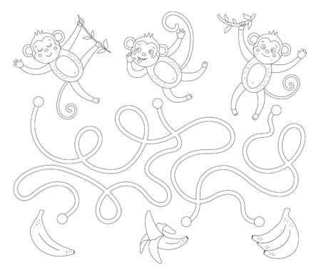 Tropical maze for children. Preschool exotic activity. Funny back and white jungle puzzle with cute monkeys and fruit. Whose banana game. Fun coloring page for kids