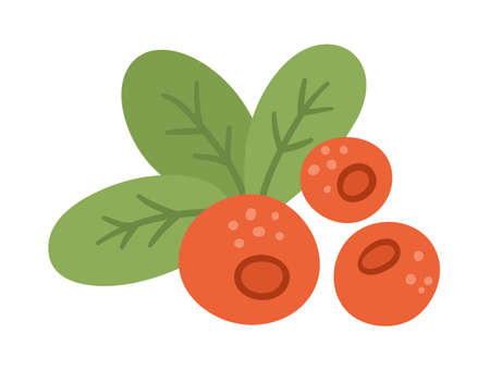 Vector cute cranberry. Autumn woodland red berry. Funny flat style illustration isolated on white background. Forest food icon Vettoriali