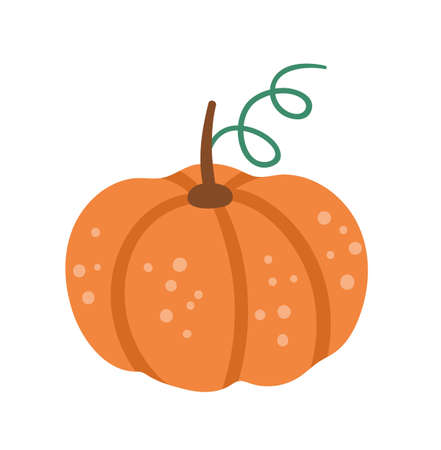 Vector cute pumpkin. Autumn vegetable. Flat style orange squash. Funny veggie illustration isolated on white background. Traditional thanksgiving food Vettoriali