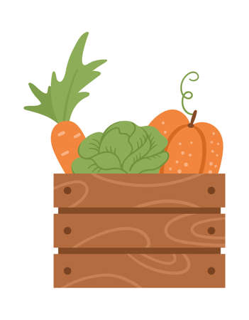 Vector cute wooden case with carrot, cabbage, pumpkin. Autumn harvest concept. Funny vegetable illustration isolated on white background. Flat style healthy food icon