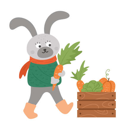 Cute hare bringing carrot to case with harvest. Vector autumn character isolated on white background. Fall season woodland animal icon for print, sticker, postcard. Funny forest illustration.
