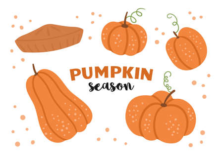 Vector set of cute pumpkins and pie. Autumn vegetables collection. Flat style orange squash pack. Funny veggie illustration isolated on white background