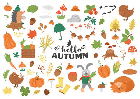 Big set of vector autumn clipart. Cute fall season icons pack for prints, stickers. Funny illustration of forest animals, pumpkins, mushrooms, leaves, weather elements, harvest, vegetables, birds