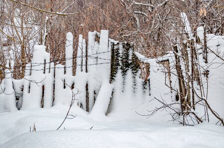Snow-covered old wooden fence made of boards of different heights with barbed wire. Behind the fence is a deep snow covered ravine overgrown with forest