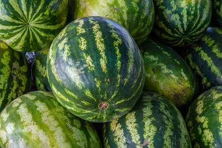 A pile of organic watermelons at a farmer's market on a summer day
