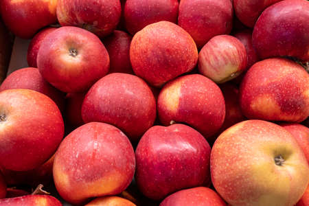 Fresh ripe red apples on the counter of a farm shop