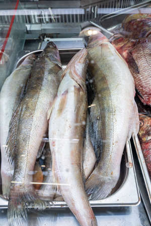 A pile of fish on the counter of a fish store in a farmer's market, fish in the window close-up. Stok Fotoğraf