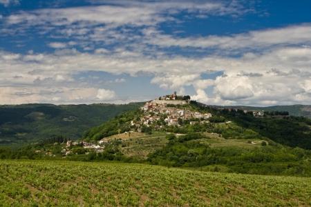Beautiful panorama of hilly landscape and greenery of Motovun photo