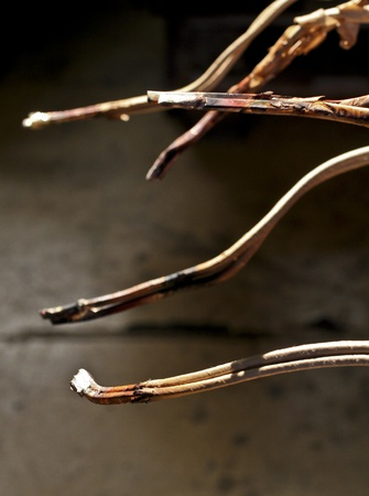 soldered: Soldered wires