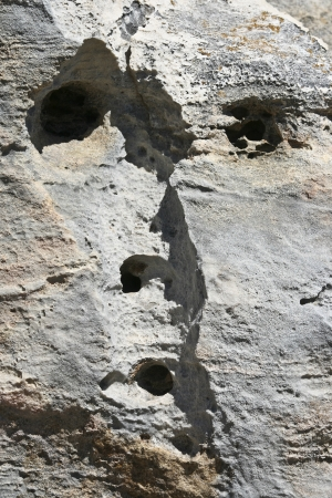 anthropomorphism: Formed face on a rock