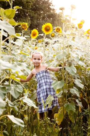 Girl on the field with sunflowers, sunflowers sun shines photo