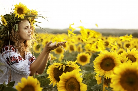 beautiful girl, a field of sunflowers, Ukrainian style embroidery  photo