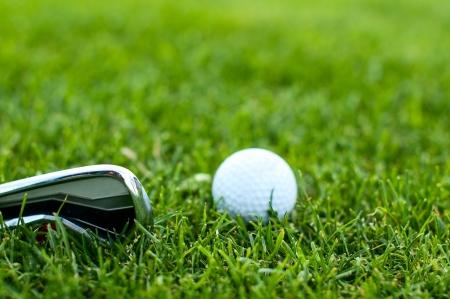 Illustration eines Golfballs auf einer gr�nen Wiese