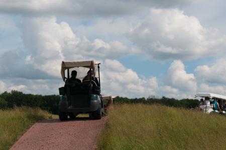 Elektrische Golf-Buggy auf dem Fairway mit Golfer auf der gr�nen in der Ferne
