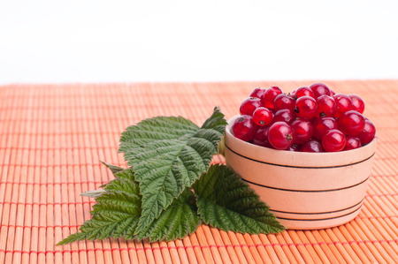 Red Currant close up, currant in a wood bowl