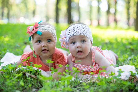 they: Two baby. They are outdoors. Stock Photo