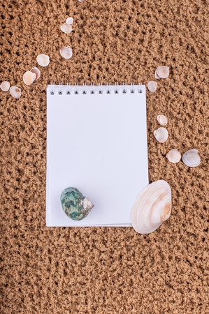 Notepad with pencil and starfish, shell on sand background or on the beach of sea using wallpaper for education photo.Take note of the product for book with paper concept or copy space and refreshing. Stock Photo