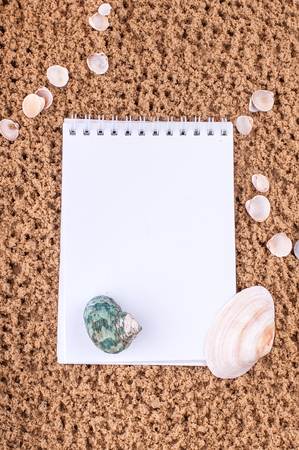 Notepad with pencil and starfish, shell on sand background or on the beach of sea using wallpaper for education photo.Take note of the product for book with paper concept or copy space and refreshing. Standard-Bild - 100418817