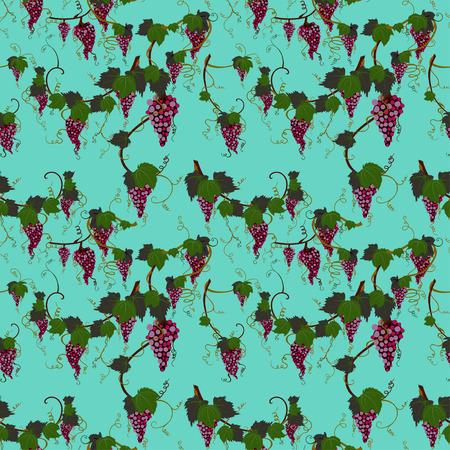 flor: grapes seamless background. colorfull vector illustration