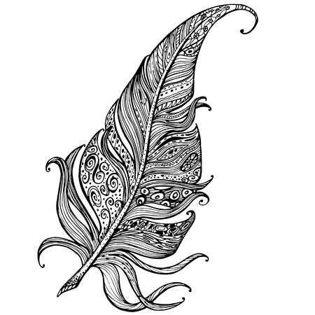 single animal: hand drawn line art of single feather
