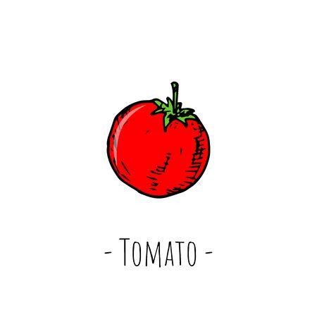 Cherry tomato. Vector cartoon illustration. Hand-drawn style.