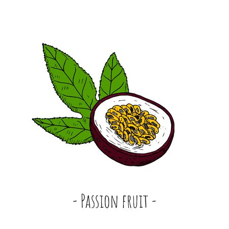 Passion fruit. Vector cartoon illustrations. Isolated objects on a white background. Hand-drawn style.