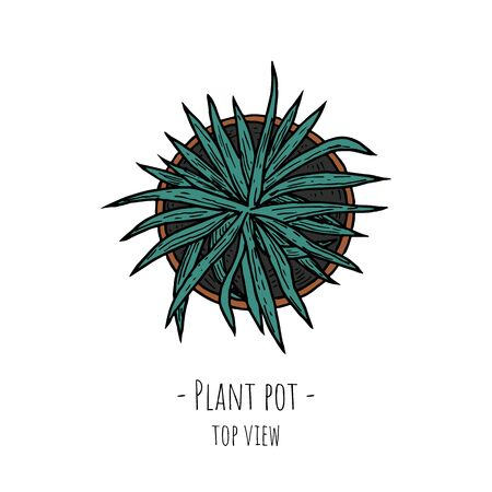 Plant pot. Top view. Isolated object on a white background. Vector cartoon illustration. Hand-drawn style. 向量圖像