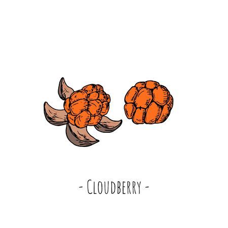 Cloud berry Isolated objects on white. Vector cartoon illustration. Hand-drawn style.