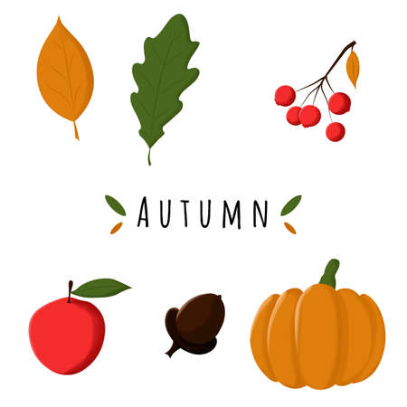 Autumn illustrations. Vector cartoon icons. Isolated objects on a white background. Ilustracja
