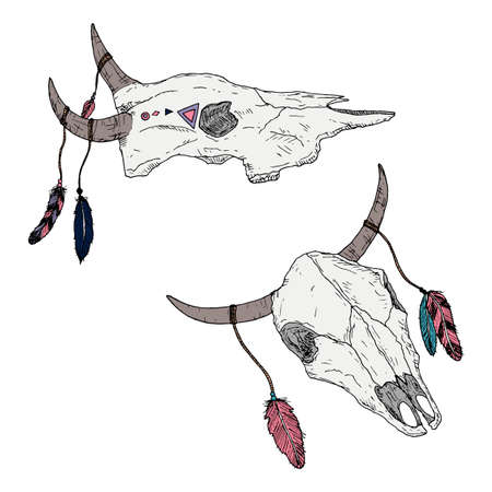 Bull skulls with feathers on horns. Boho style. Vector illustrations. Isolated on white. Hand-drawn style.