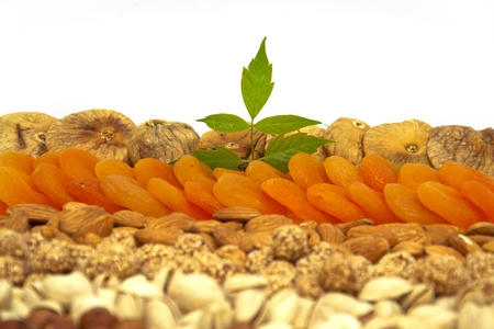 Set of nuts and dried apricots- peanuts, cashews, almonds, walnuts, hazelnut Stock Photo - 13765353