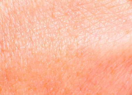 cracklier: leather texture closeup