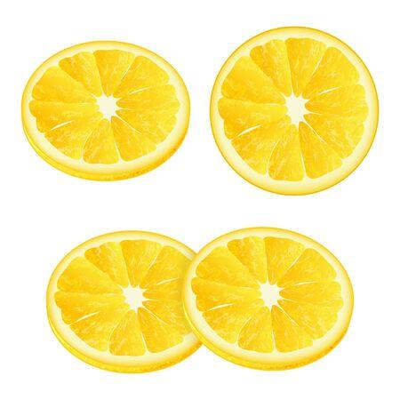 Fette di limone. Stile realistico. Illustrazione vettoriale. Isolato su bianco. Oggetto per packaging, pubblicità, menu. Isolato su bianco.