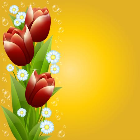 Una ilustración editable de un ramo de tulipanes y manzanillas