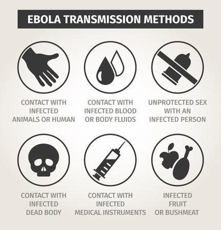 set of icons. Ways of transmission Ebola virus.