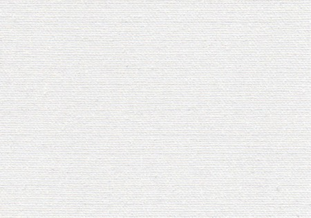 white horizontal canvas with delicate grid to use as grunge background or texture
