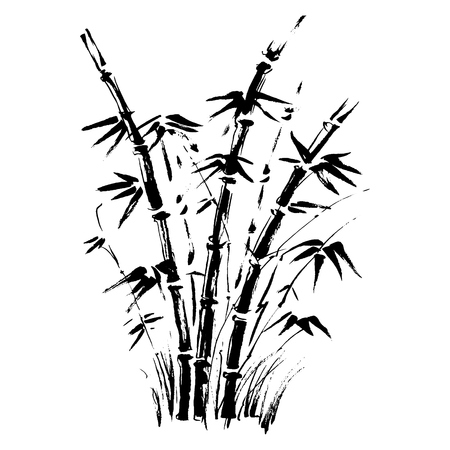 Bamboo branches isolated on the white background. Vector Çizim