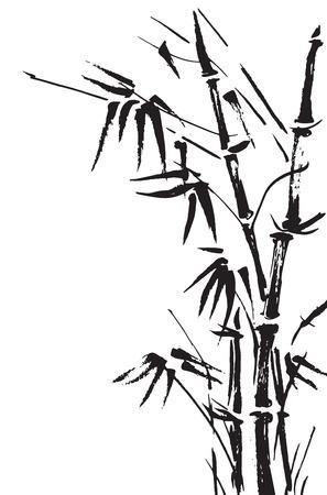 japones bambu: Ramificaciones de bambú aislados en el fondo blanco. Vector