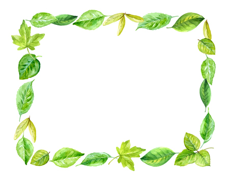 plant tree: square frame made of various leaves in watercolor. Hand-painted design elements.