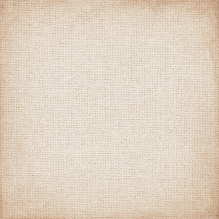 packing material: canvas with delicate grid to use as grunge background or texture Illustration