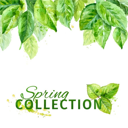 Vector illustration of spring leaves. watercolor composition. Vettoriali
