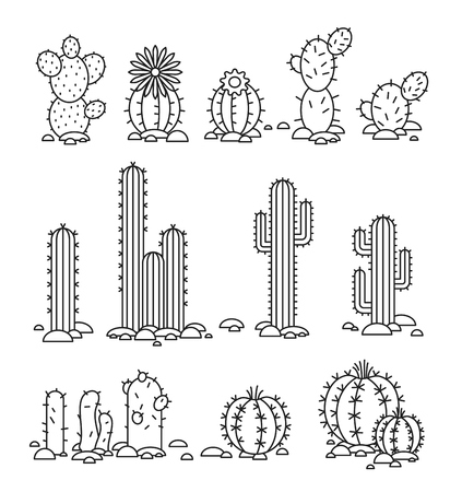 spines: Vector illustration Cacti in the desert. elements of a corporate logo