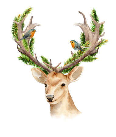 The head of a male deer with horns and woven branches of a tree. Isolated background. Boho template to design posters, wedding invitations, cards. Christmas illustration