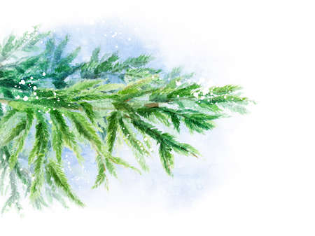Forest branch of spruce In the snow. Watercolor illustration. Background template for design posters, wedding invitations, postcards and more