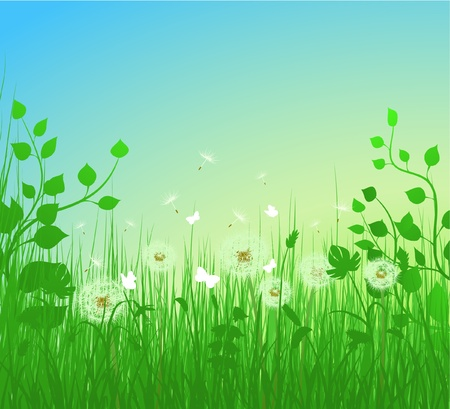 Dandelion meadow illustration Vector