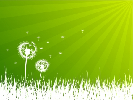 sky and grass: Dandelions background