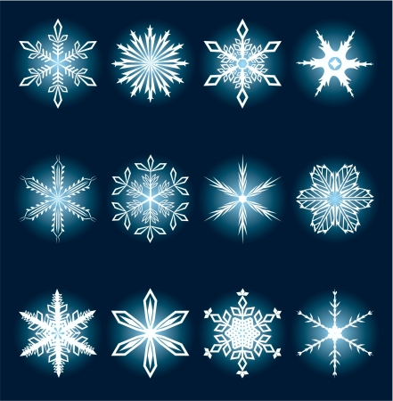 Ornate snowflakes collection