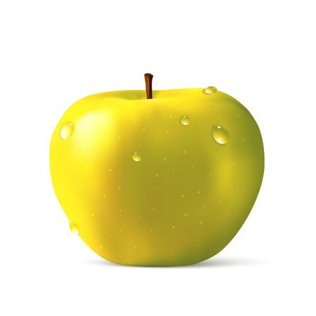 yellow apple: Yellow apple illustration