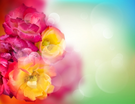 Virbant colored flowers background with copyspace
